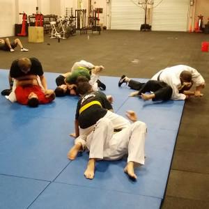 Bradenton Martial Arts